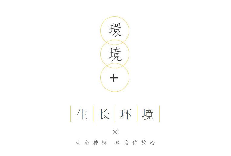 开犁商品03.jpg